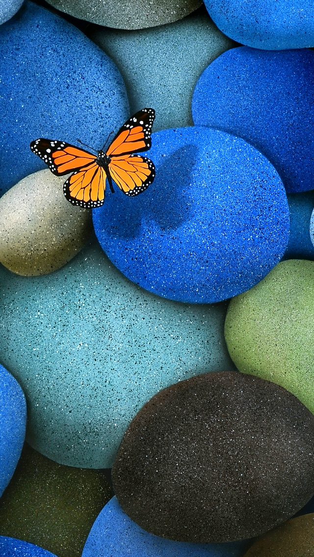 Lonely Butterfly iPhone wallpaper