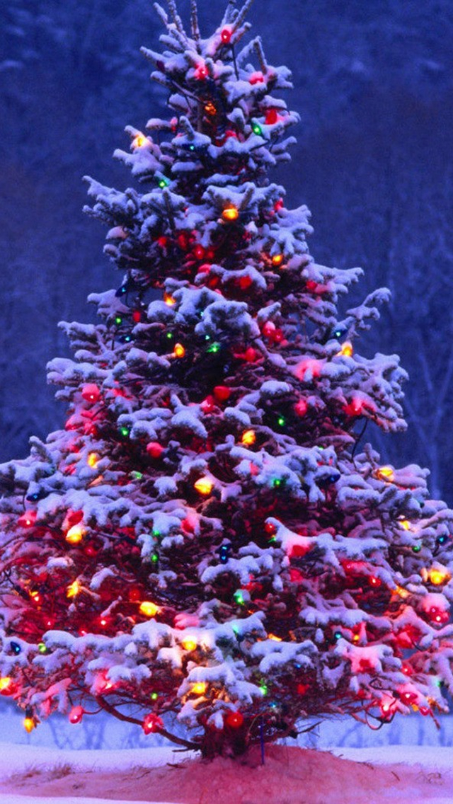 Christmas Tree iPhone wallpaper