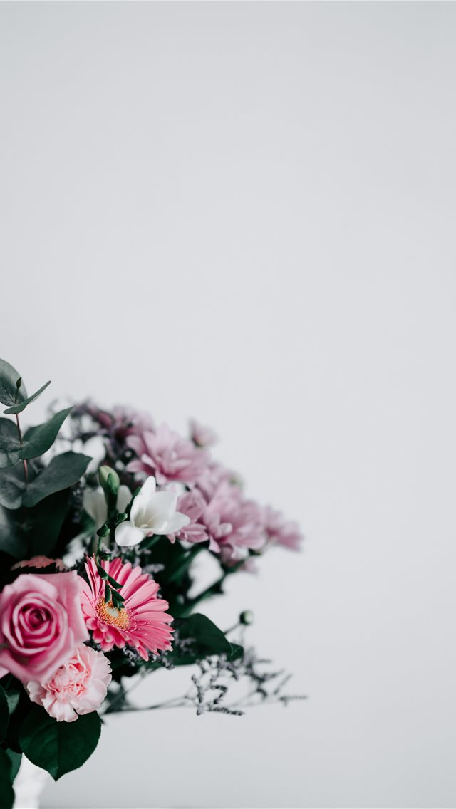 Flowers with blank space iPhone wallpaper