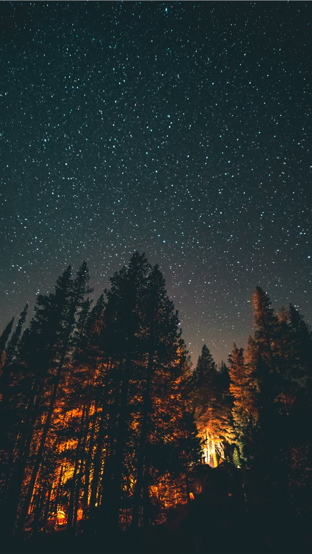 nightlight iPhone wallpaper