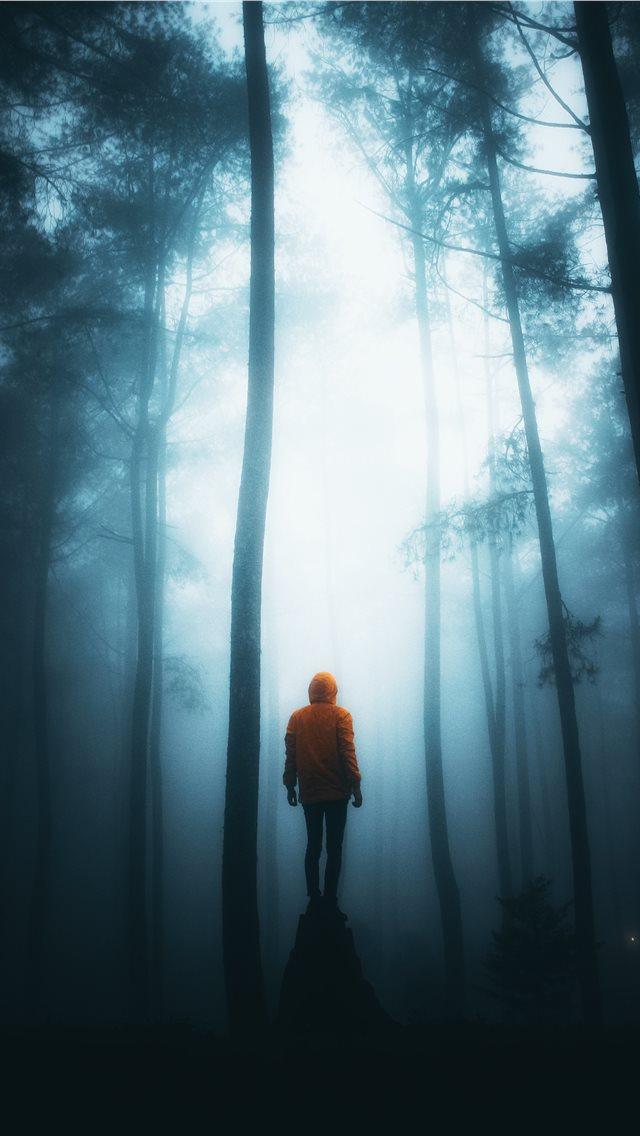 Misty Night iPhone wallpaper