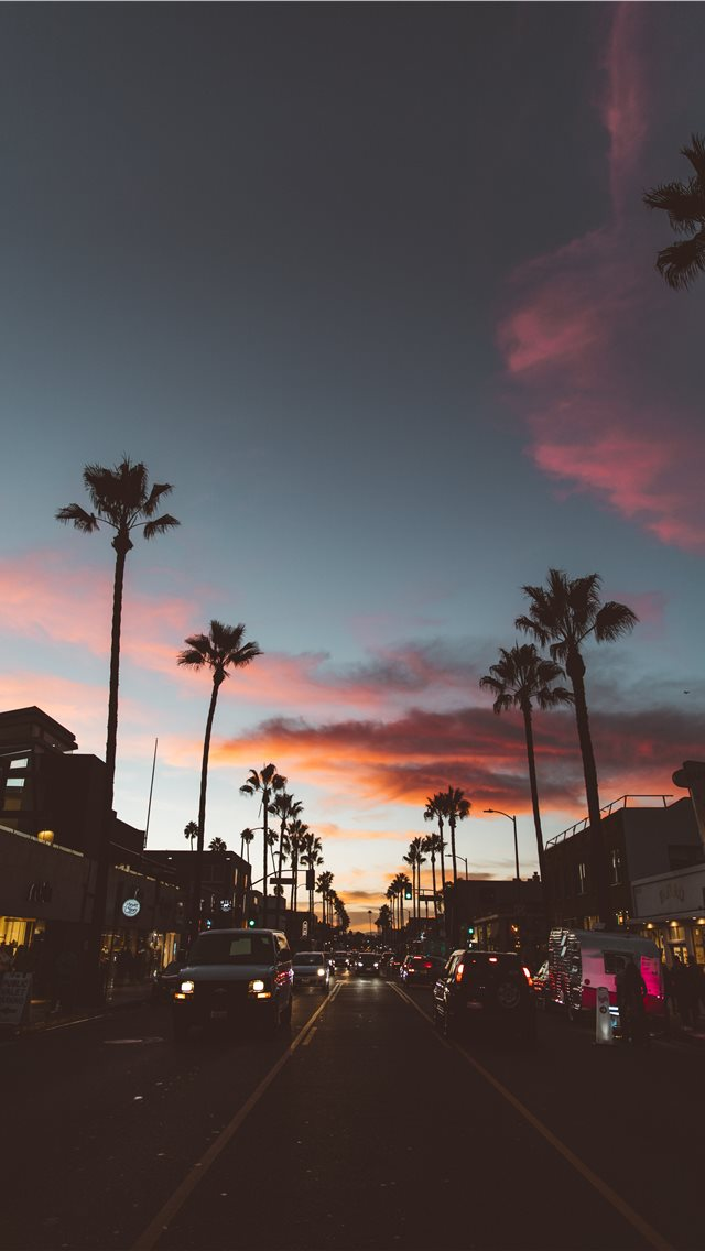 Abbot Kinney iPhone wallpaper