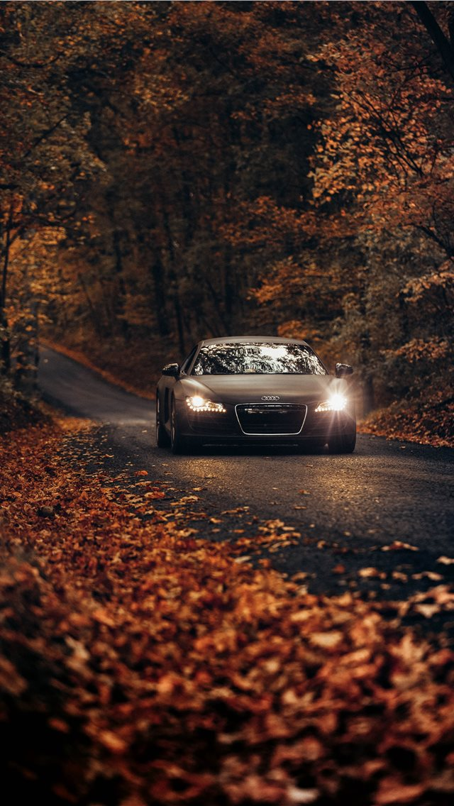 Fall Drives on Country Roads iPhone wallpaper