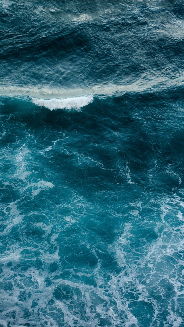 Wild Ocean iPhone wallpaper