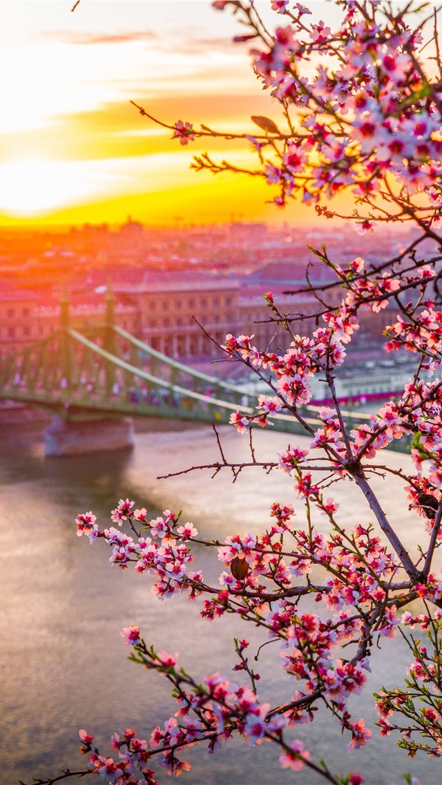 Liberty Bridge In Hungary Spring Edition Iphone Wallpapers