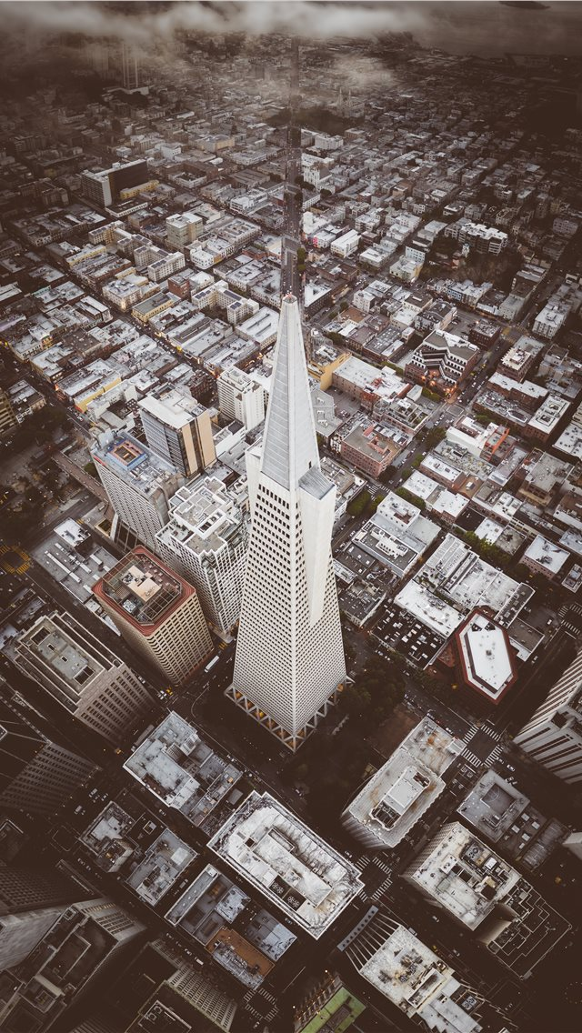 Iconic Transamerica Pyramid building in San Franci... iPhone wallpaper
