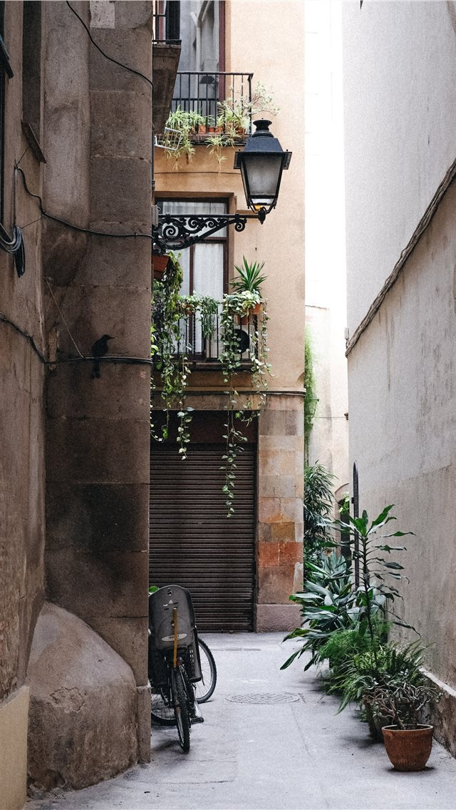 Barcelona  Spain iPhone wallpaper