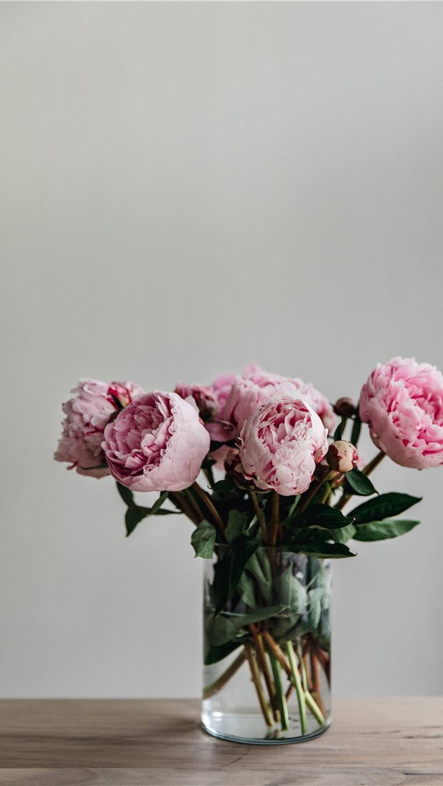 This simple image of a bunch of peonies in a vase ... iPhone wallpaper