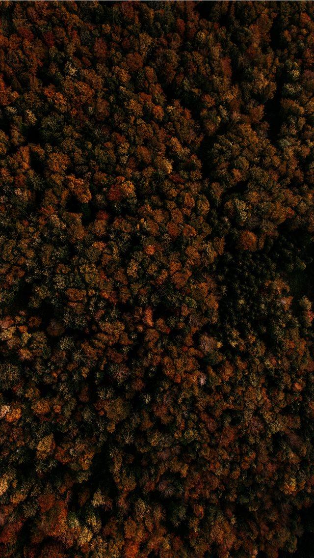 Best Rust Iphone Wallpapers Hd Ilikewallpaper