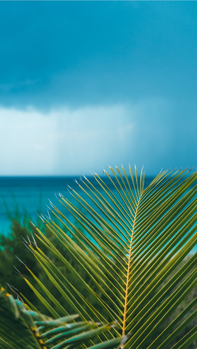 Eleuthera  Bahamas iPhone wallpaper