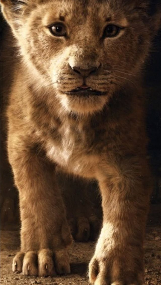 the lion king simba 2019 4k iPhone wallpaper