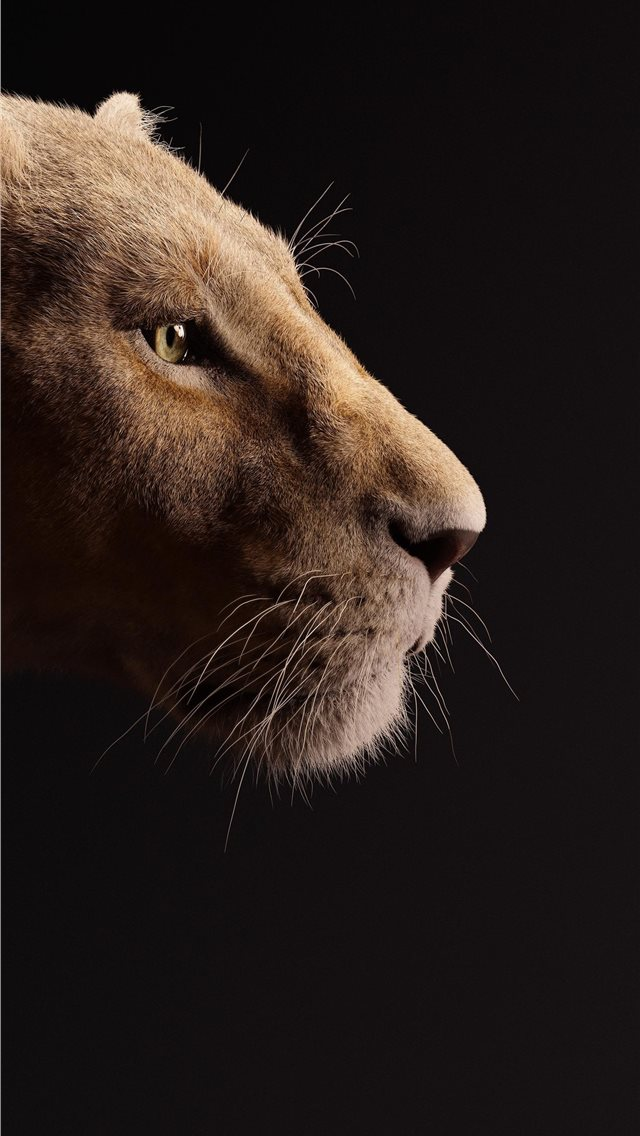 beyonce as nala the lion king 2019 5k iPhone wallpaper