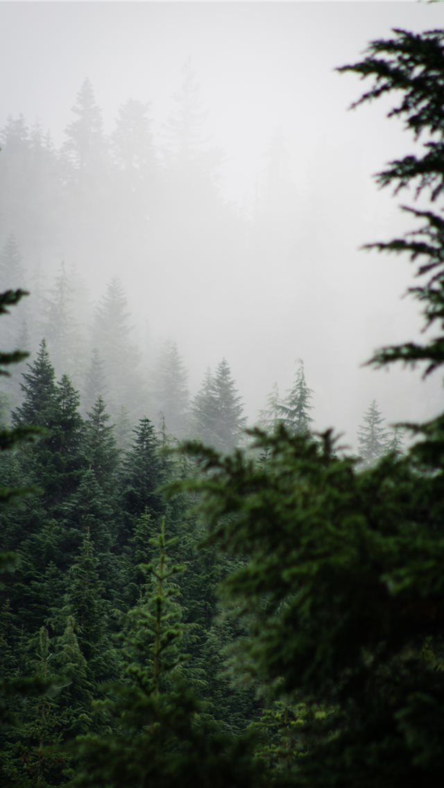 Alpine Lakes Wilderness iPhone wallpaper