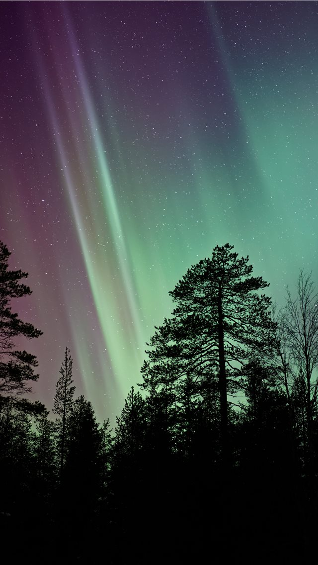 silhouette photo of aurora borealis iPhone wallpaper