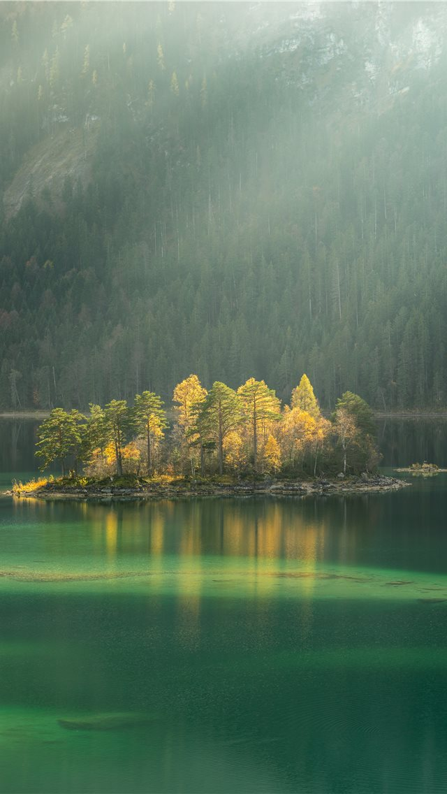 trees surrounded by body water during daytime iPhone wallpaper