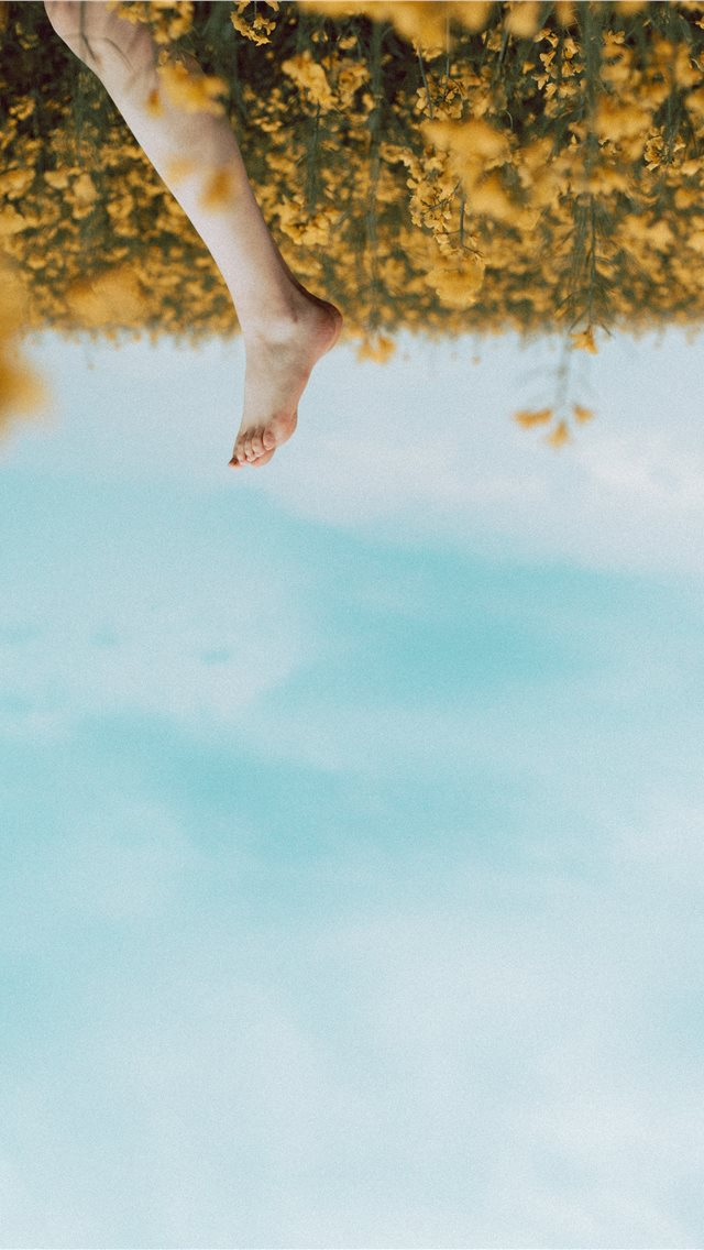 person's foot in a yellow flower field during dayt... iPhone wallpaper