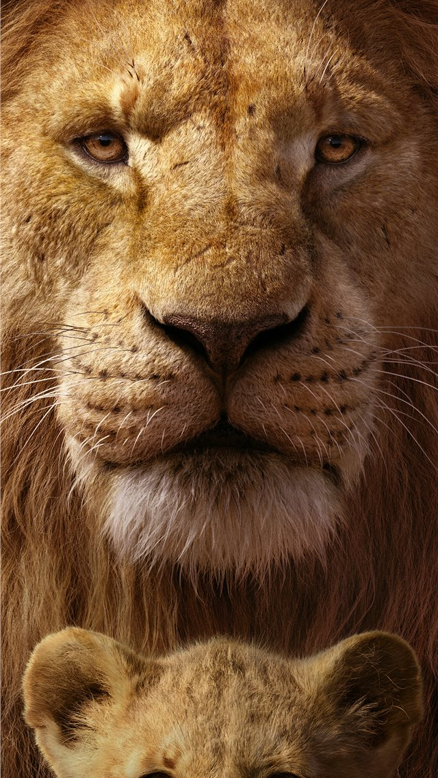 the lion king 8k iPhone wallpaper