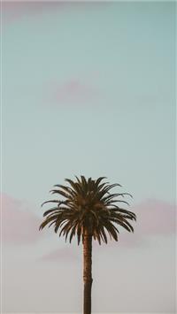 Best California Iphone Wallpapers Hd Ilikewallpaper