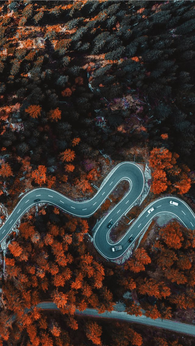 aerial photography of asphalt road surrounded with... iPhone wallpaper