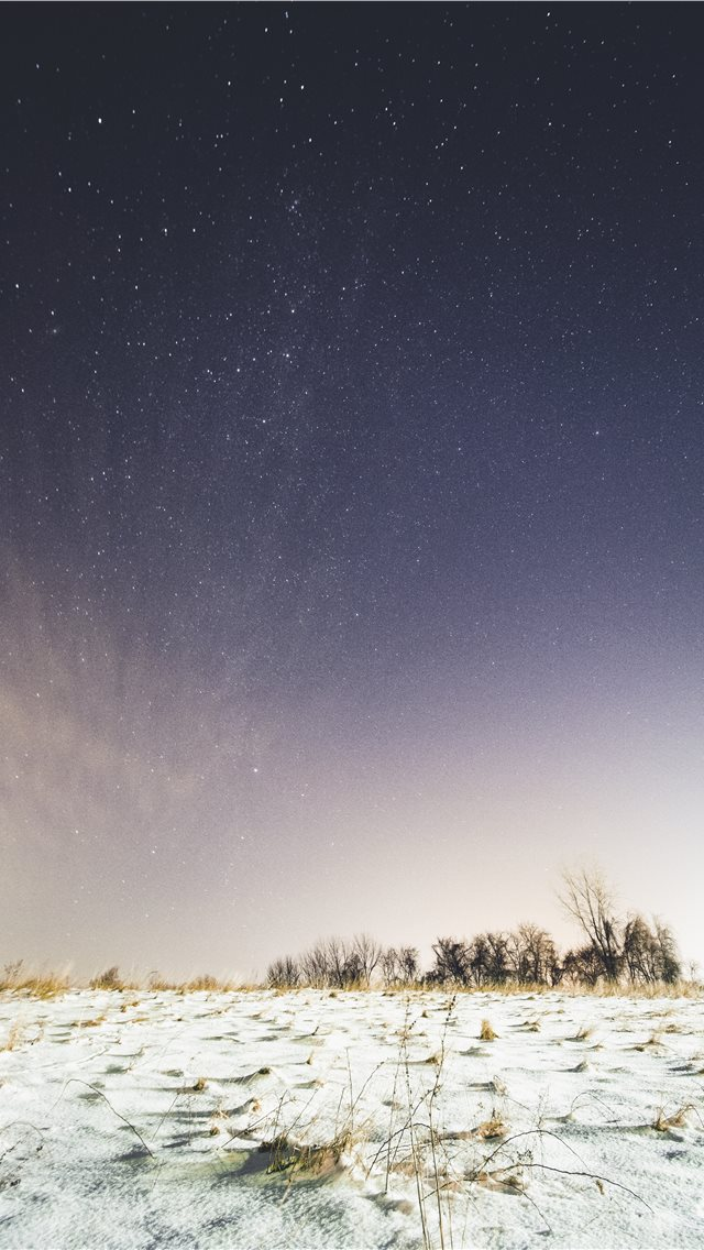 snow covered ground under sky full of stars iPhone wallpaper