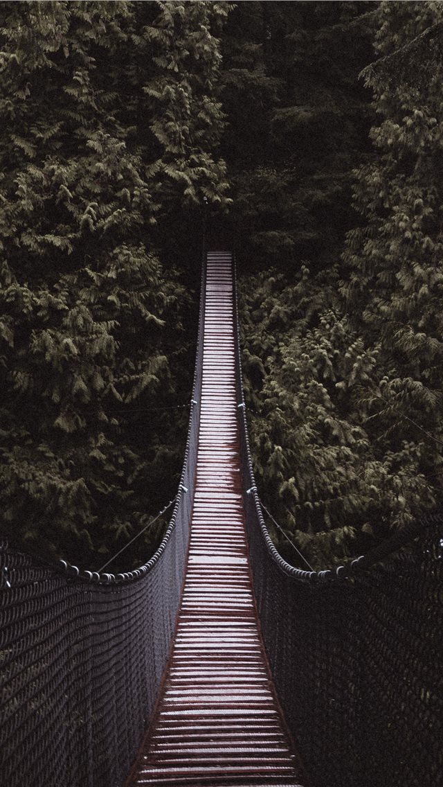 brown and black bridge between trees iPhone wallpaper