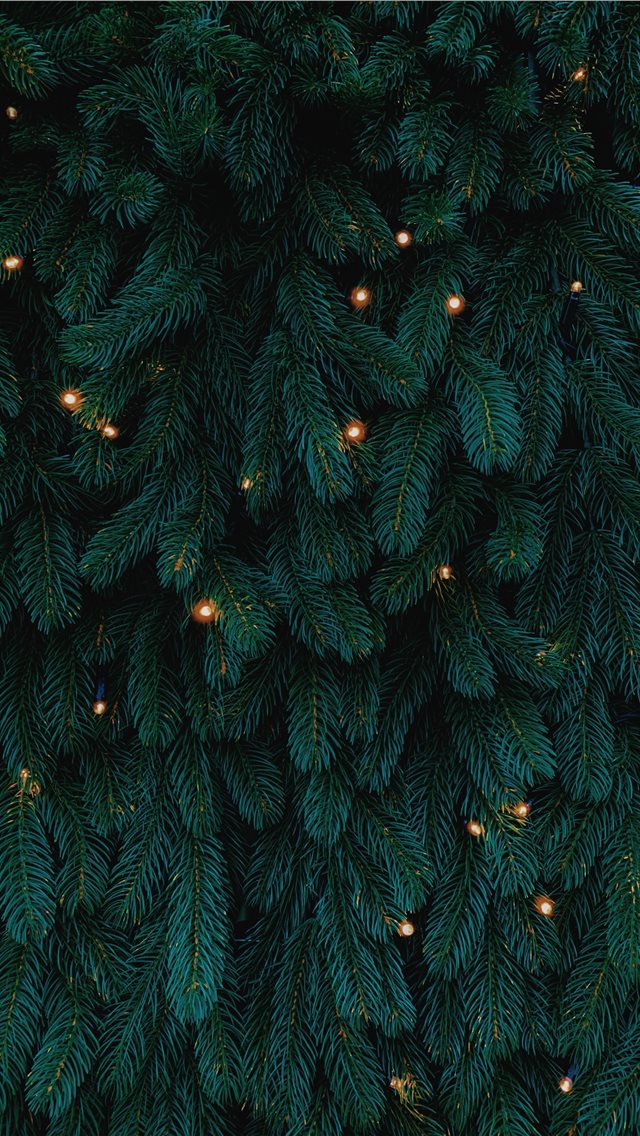 green Christmas tree with lights iPhone wallpaper