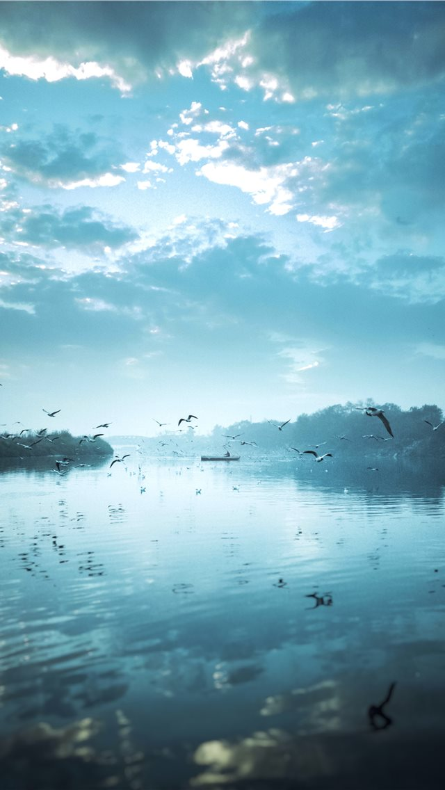 birds flying near body of water under cloudy sky d... iPhone wallpaper