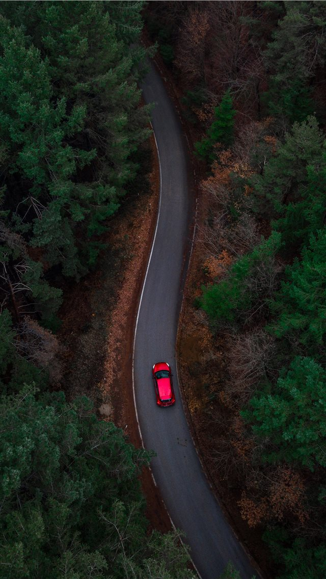 aerial photo of red car passing by green trees iPhone wallpaper