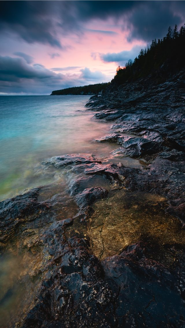 shore surrounded with trees iPhone wallpaper