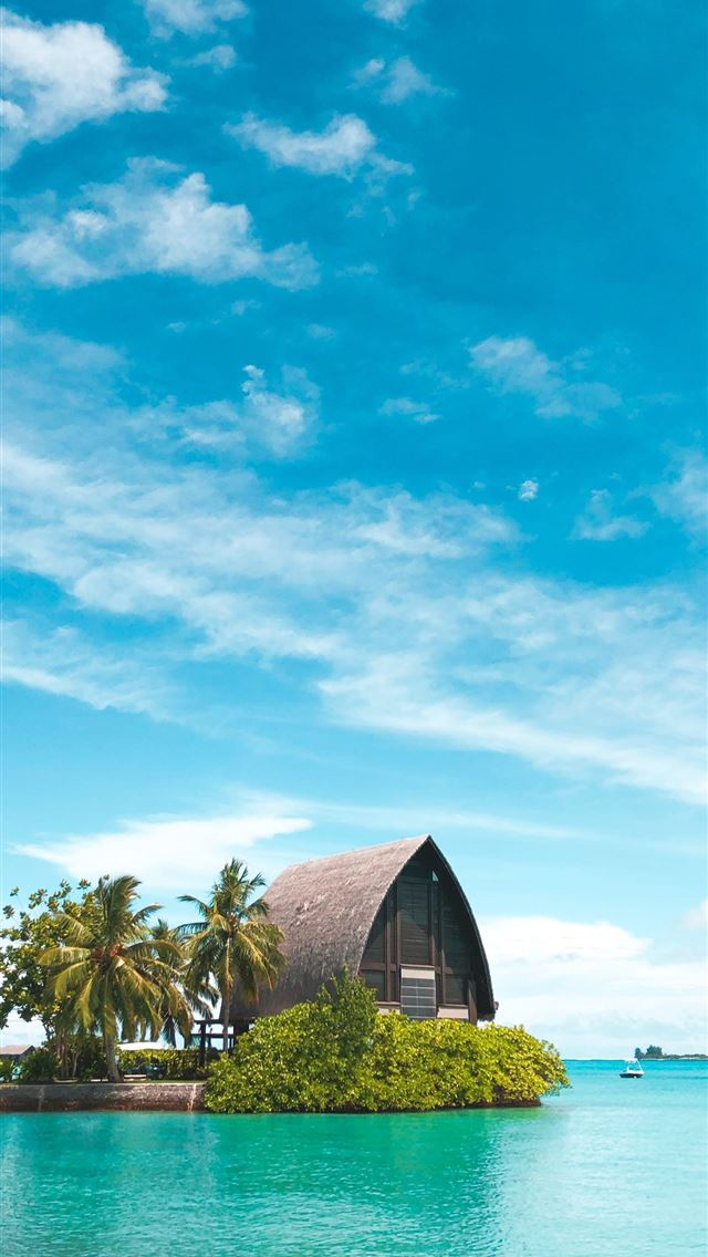 brown hut near coconut palm trees under blue sky iPhone wallpaper