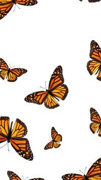 Best Butterfly Iphone Wallpapers Hd Ilikewallpaper