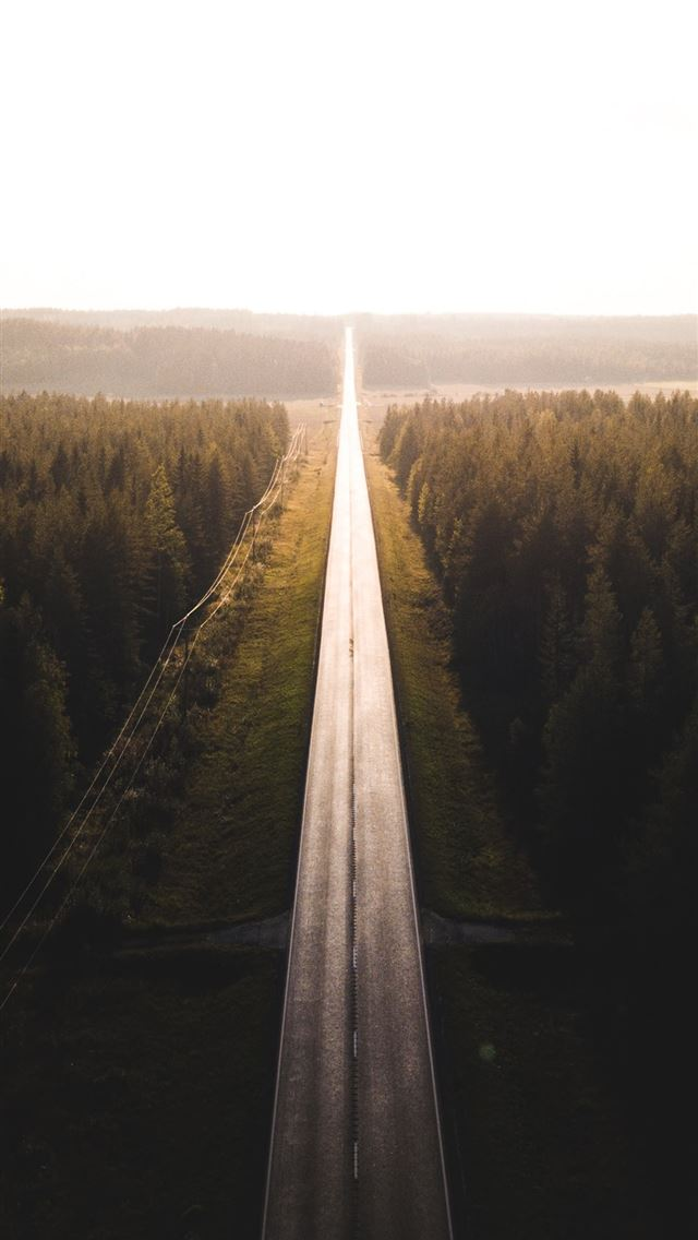 black road surrounded by trees iPhone wallpaper
