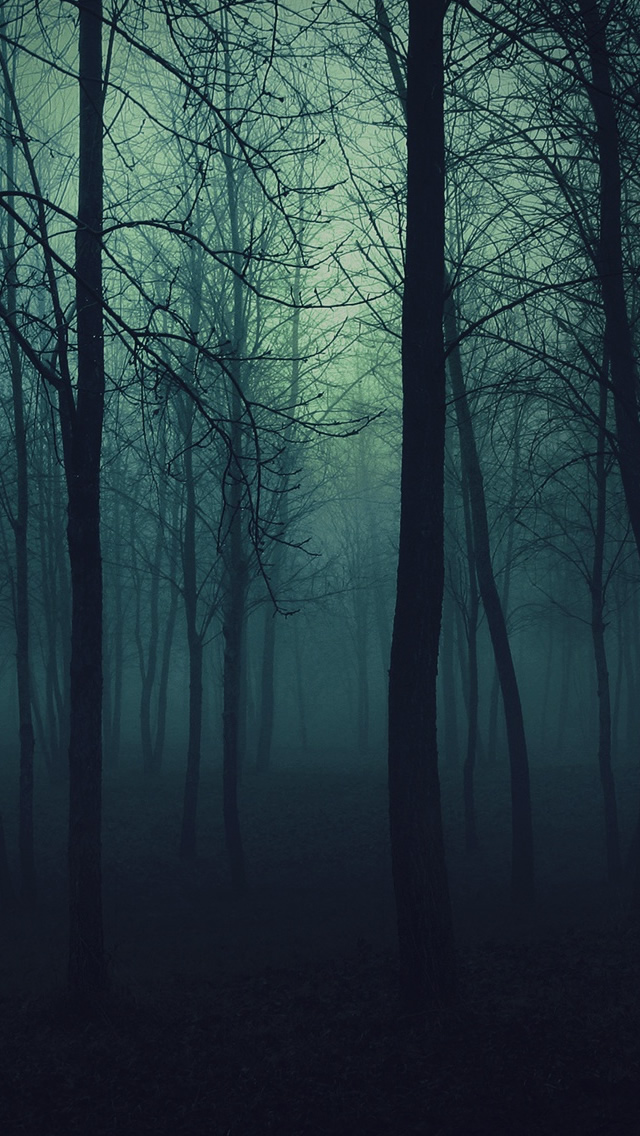 Dark Forest iPhone wallpaper