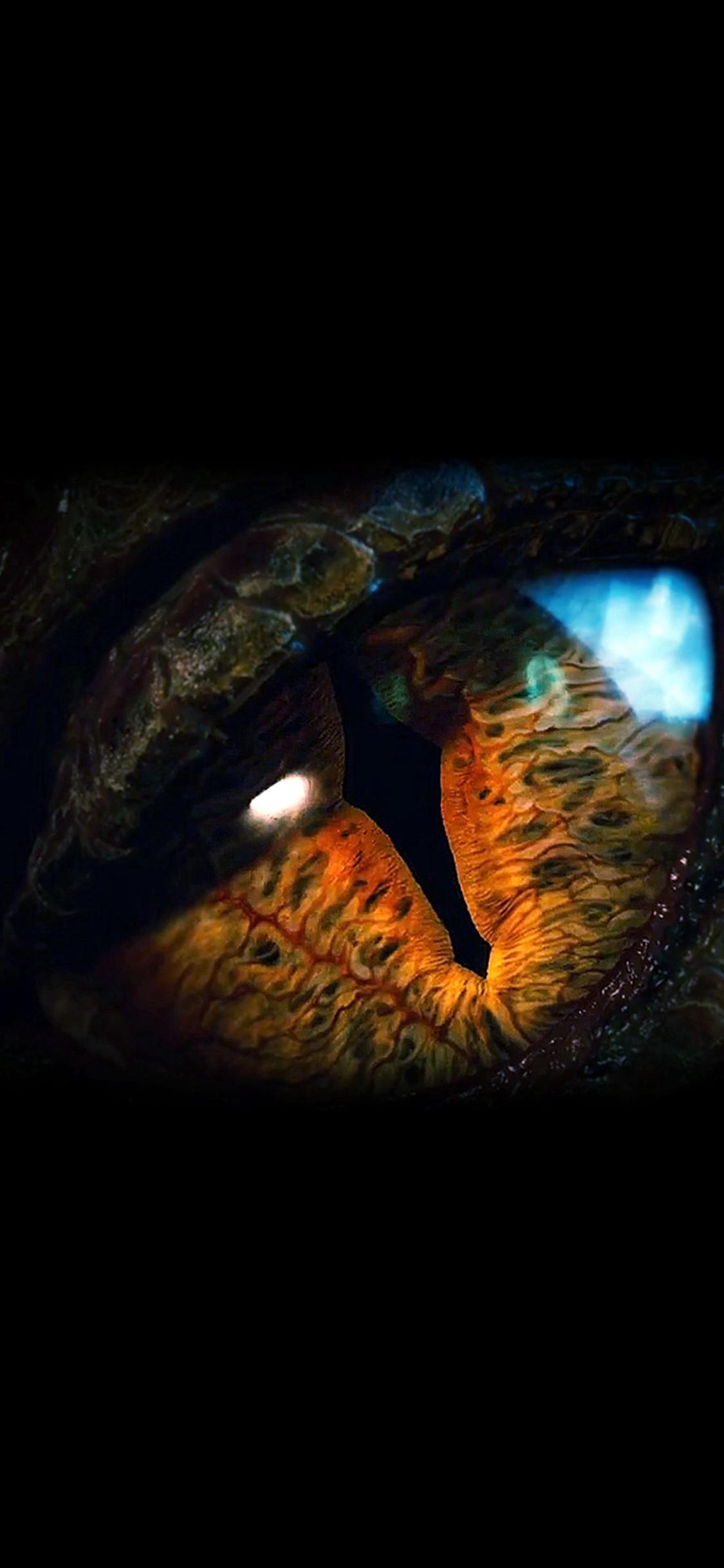 Eye Dragon Film Hobbit The Battle Five Armies Art Dark