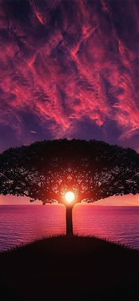 Sea tree purple sky iPhone X wallpaper