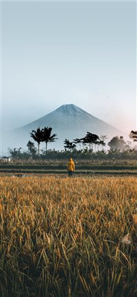 BEAUTIFUL MORNING WITH THE SEMERU MOUNTAIN iPhone X(S/Max/R) wallpaper