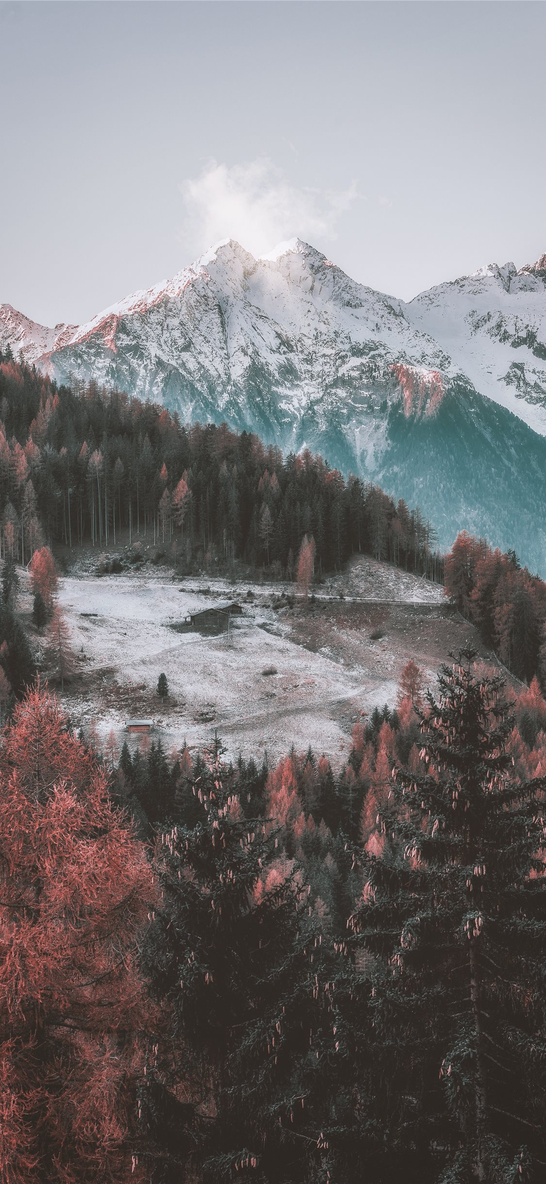 Icy Mountain And Green Trees Scenry Iphone X Wallpapers Free Download