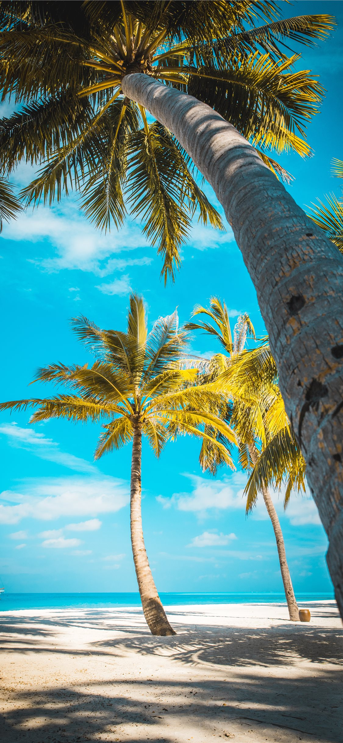 Best Summer iPhone X HD Wallpapers   iLikeWallpaper