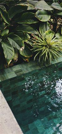 Best pool iPhone X Wallpapers HD - iLikeWallpaper