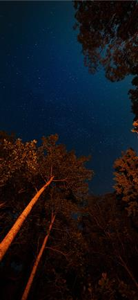 Best Starry Sky Iphone X Wallpapers Hd Ilikewallpaper