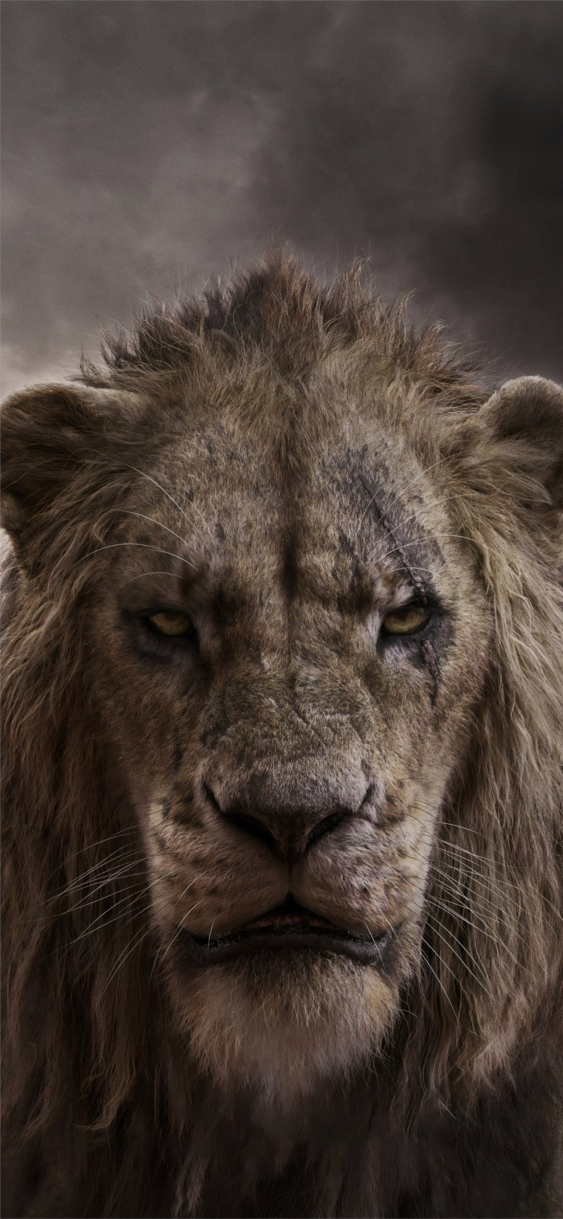 Chiwetel Ejiofor As Scar In The Lion King 2019 4k Iphone X