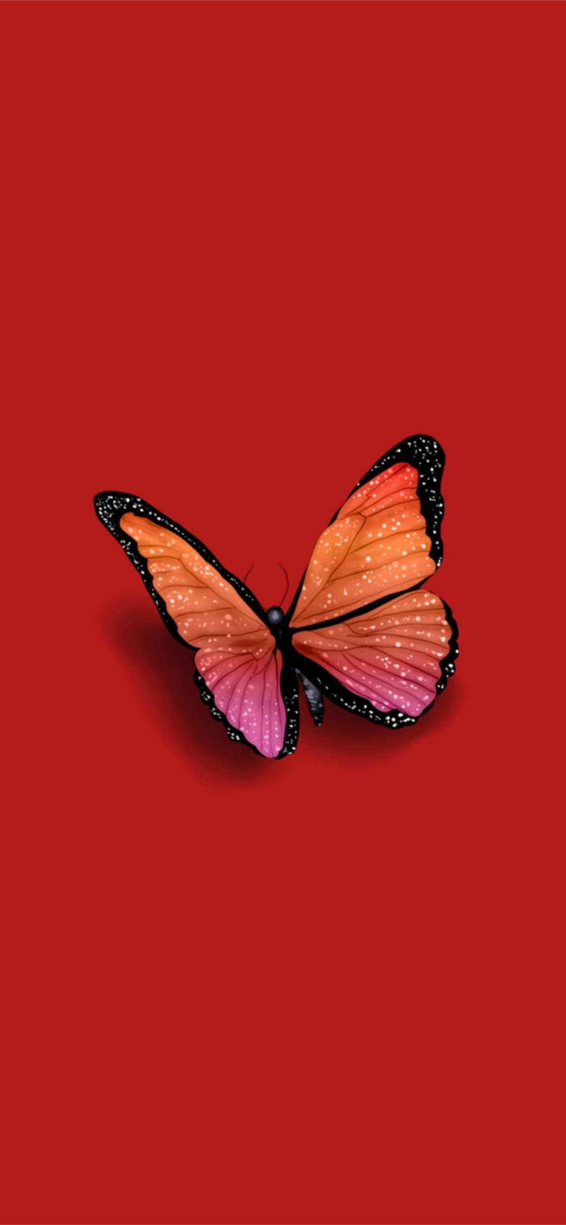 Butterfly By Steph On Colors Iphone X Wallpapers Free Download
