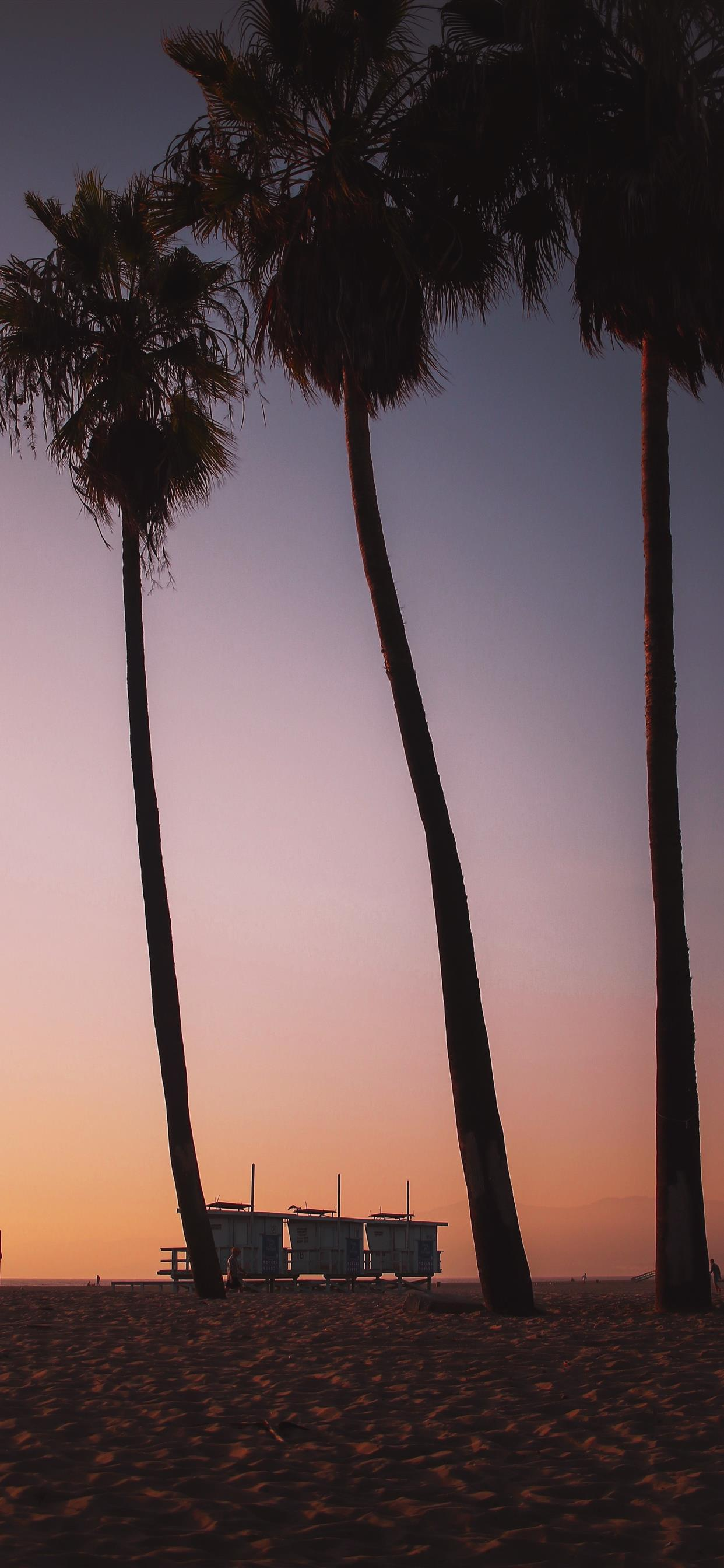Sunsets In Venice Beach Are Like Ketchup To Your F Iphone X Wallpapers Free Download
