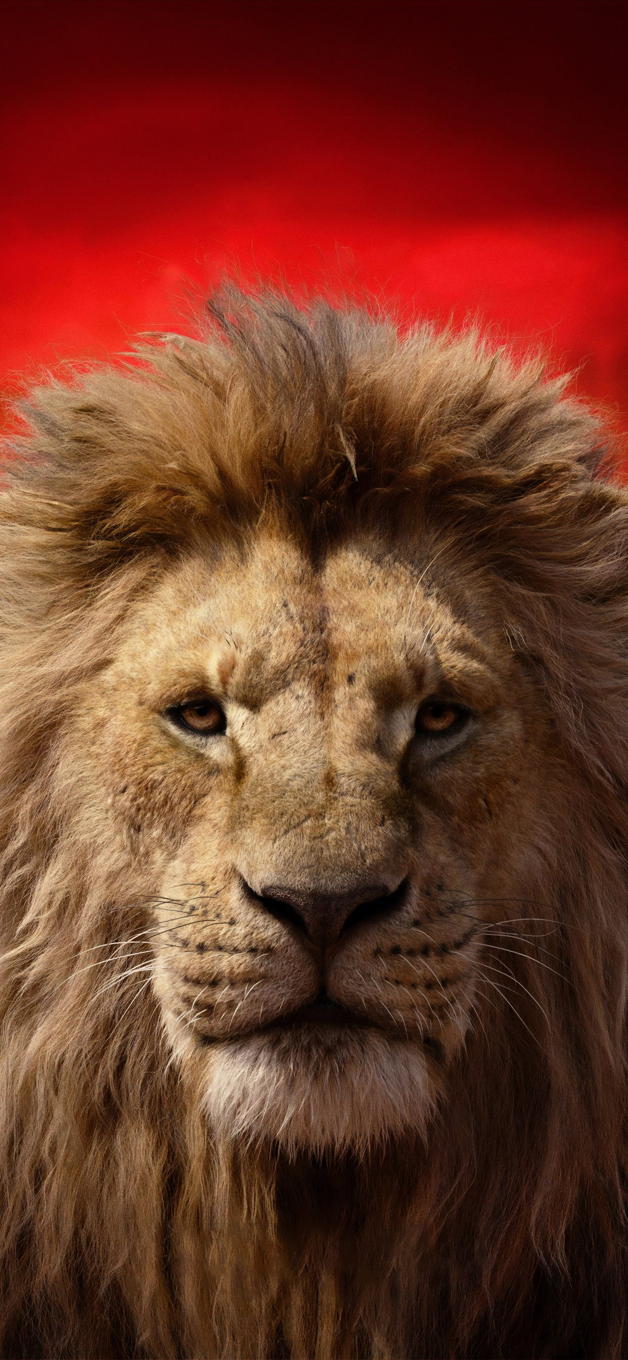 James Earl Jones As Mufasa The Lion King 2019 4k Iphone X Wallpapers Free Download