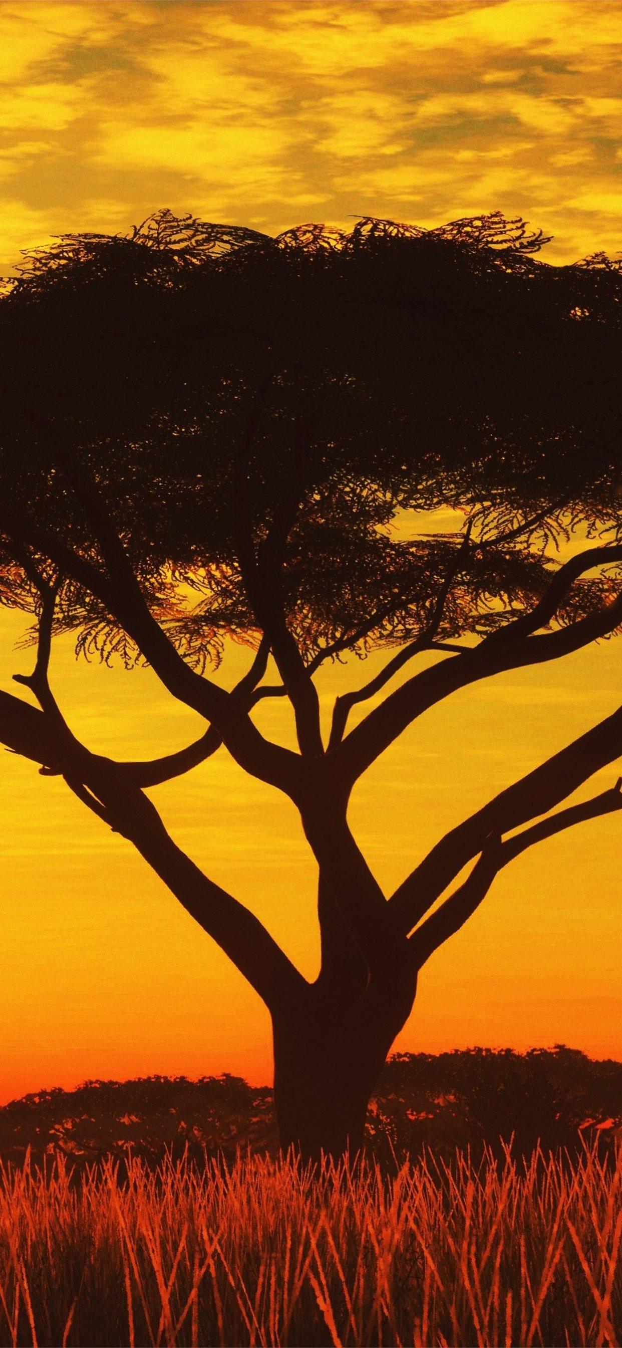 Serengeti Sunset 4k Samsung Galaxy Note 9 8 S9 S8 Iphone X Wallpapers Free Download