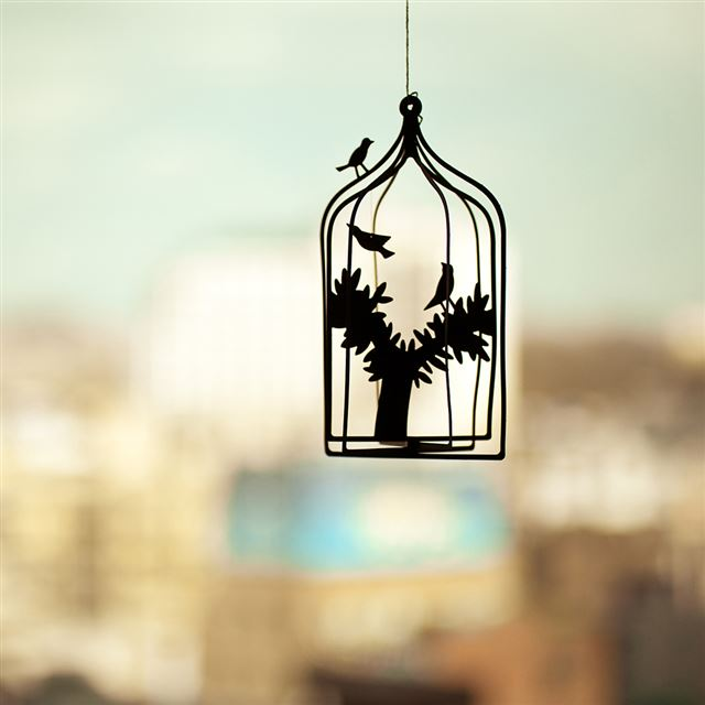 Bird Cage iPad wallpaper
