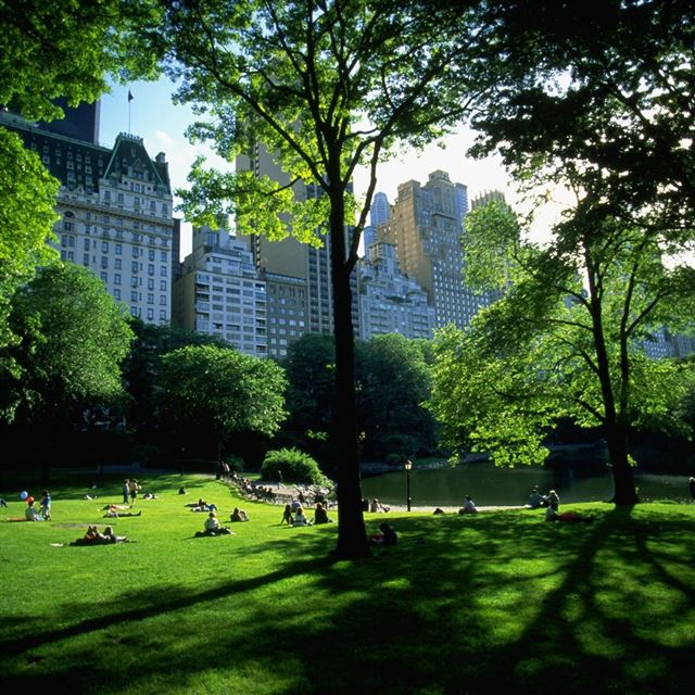 Central Park iPad wallpaper