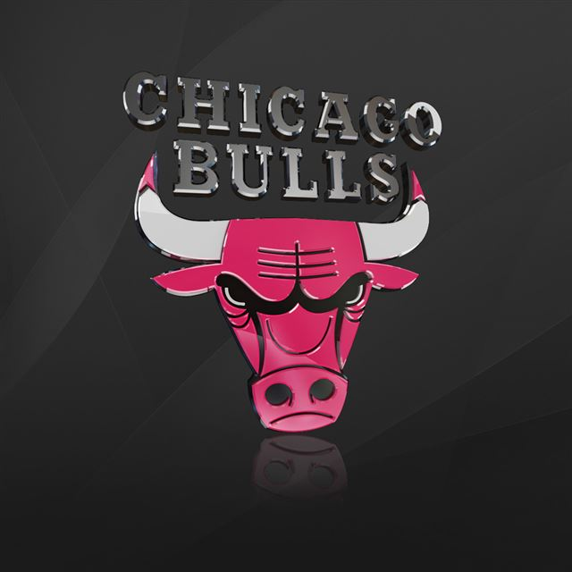 Chicago Bulls IPad Wallpaper