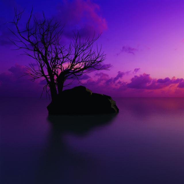 Wallpaper Iphone Violet: Purple Sunset IPad Wallpaper Download