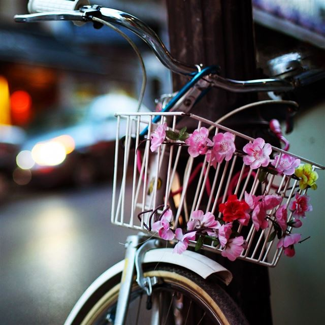 Flower Bike iPad wallpaper